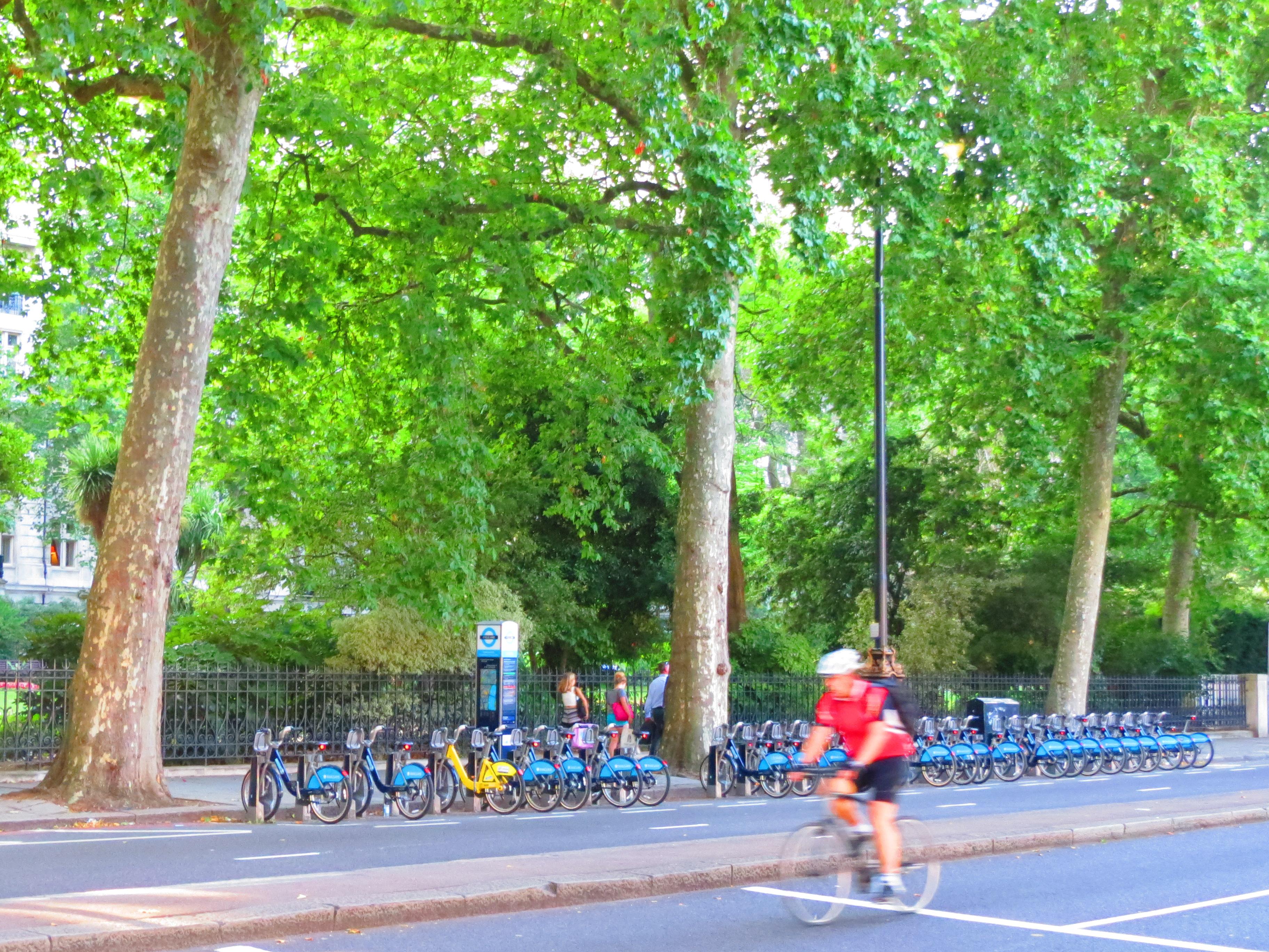 サイクリストと青い貸し自転車